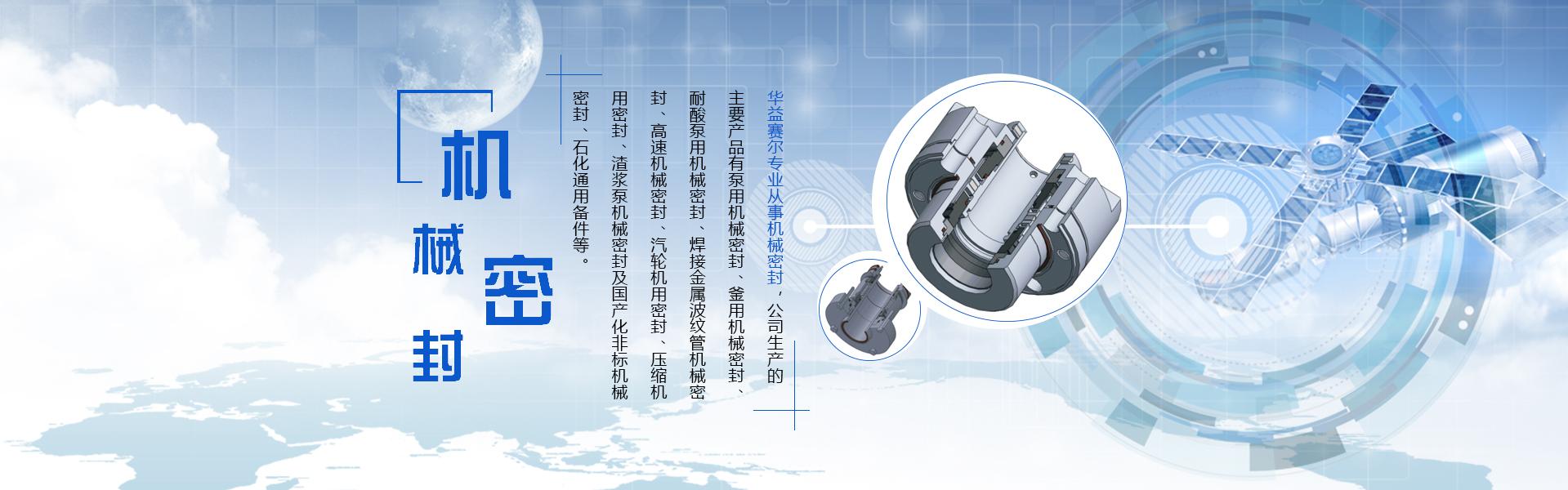 水泵机械密封